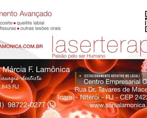 sonialamonica.com.br